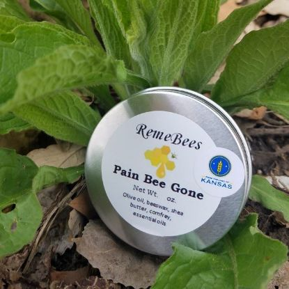 Pain Bee Gone salve 2.0 oz